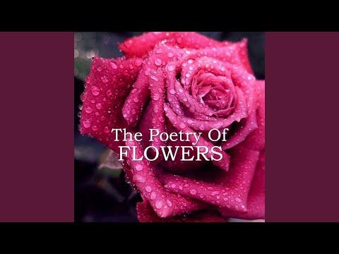 Edmund Waller - Go Lovely Rose