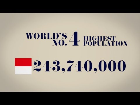 Indonesia Population in Motion Infographics