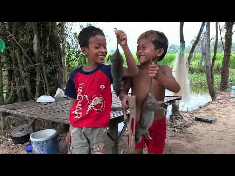 Awesome Man and Boys, hunting rat in the field with Trap, How to use Bamboo Rat trap to Catching Rat