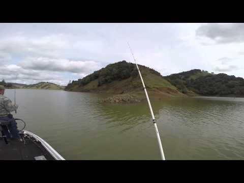 Prespawn lake sonoma bass fishing youtube for Lake sonoma fishing report