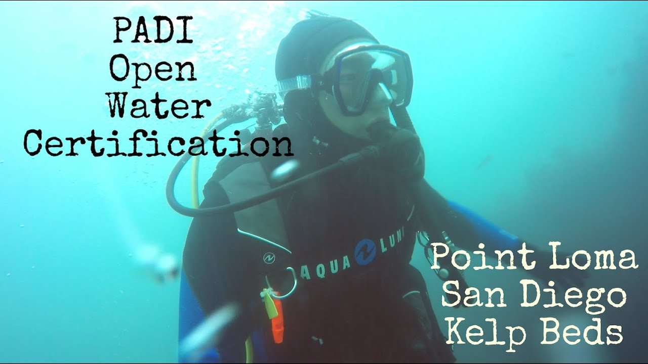 Padi Open Water Dive Point Loma Kelp Beds Pipeline Youtube