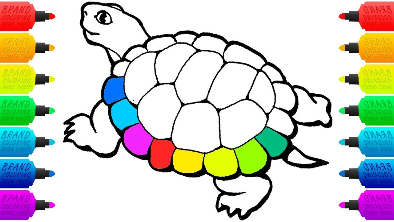 Rainbow Turtle for Baby | Drawings and Coloring Book Pages