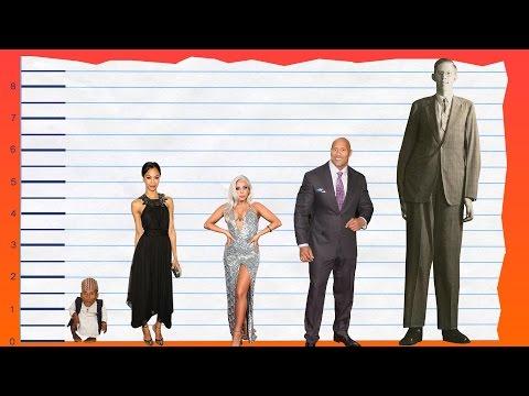 How Tall Is Zoe Saldana? - Height Comparison!