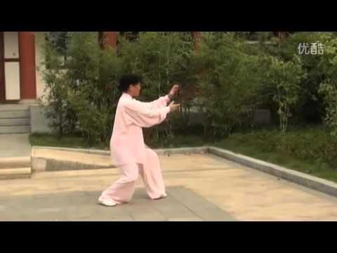 正宗杨氏太极拳85式全套 李占英老师第64位入室弟子王桂荣