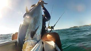 A nice Longtail / Northen Bluefin tuna - Kayak Fishing Palm Beach Australia