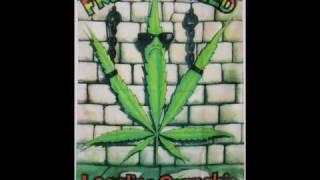 Wayne Marshall - Legalize Ganja
