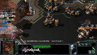 Starcraft 2  BratOK  Вечерний клик Q..Q