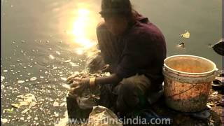 Rag picker woman washing clothes along the Yamuna river