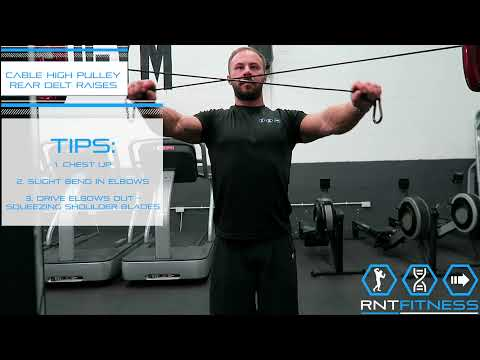 Cable High Pulley Rear Delt Raises