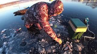 Рыбалка на Озернинском водохранилище на плотву
