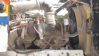 1982 Western Star Dump Truck ENGINE FOCUS