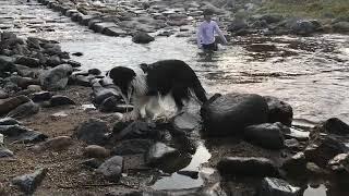 川場田園プラザで限定モーニングを食べてお散歩して川遊び なかなかに犬...