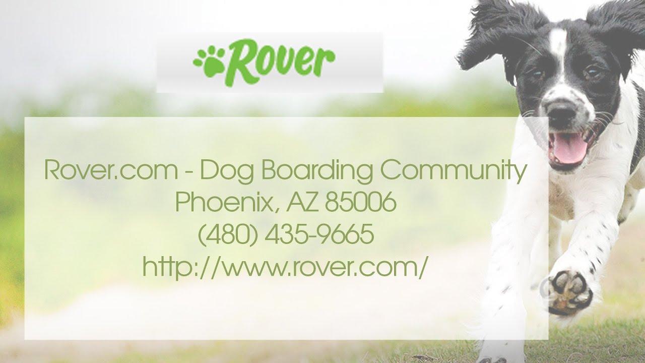 Rover Com Dog Boarding Community Reviews Pet Care Phoenix