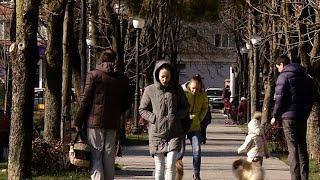 Новые зеленые зоны появятся в городах и станицах Кубани