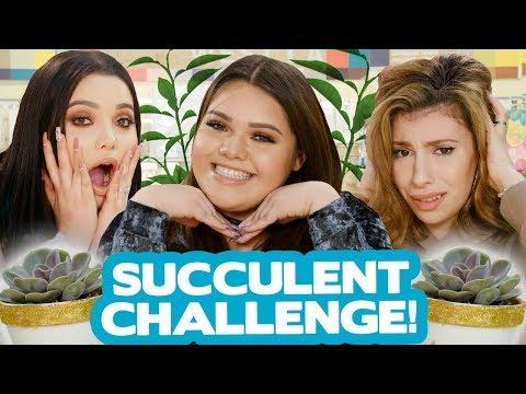 DIY SUCCULENT DECOR CHALLENGE?! w/ Karina Garcia, MayraTouchOfGlam & Julia Gilman