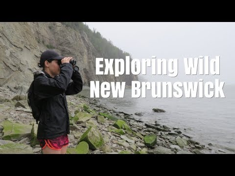 Exploring Wild New Brunswick