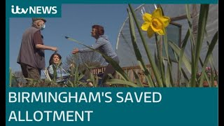 """""""An oasis in the city"""":  The Birmingham allotment helping people get through lockdown  