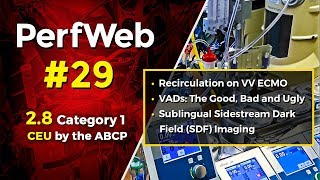 PerfWeb 29—VV ECMO, VADs, and Sublingual incident dark field imaging