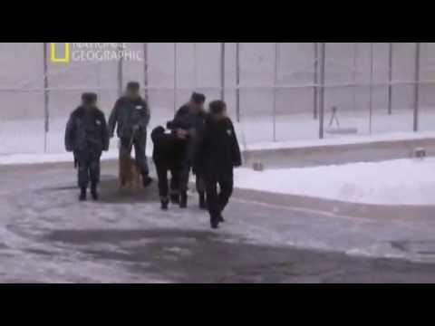 Клип кобякова про тюрьму .