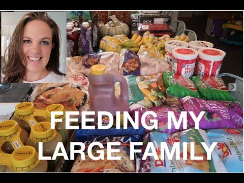 GROCERY HAUL - Watch Me BUST My Budget! (THM, Keto, large family)