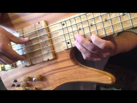 Download Youtube: Careless Whisper Solo Fodera Bass