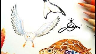 Fliegende Möwe zeichnen lernen 🕊 How to Draw a Flying Bird Gull 🕊 Comment dessiner une mouette
