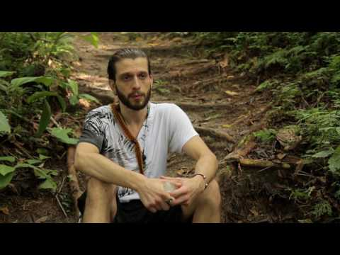 Ayahuasca Healing Depression - Review of Deep Immersion Retreat - Roman