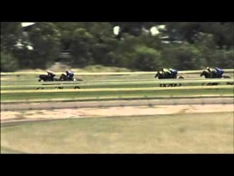 Perth Racing   the Western Australian Turf Club   Race results and replays