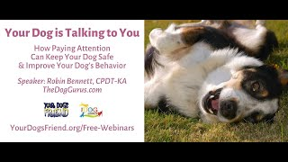 Your Dog is Talking to You  6/2/21