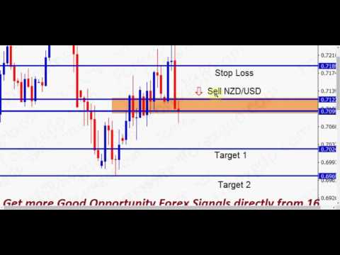 Highest profit income forex