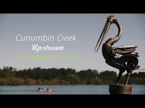 Currumbin Creek Upstream - ゴールドコースト カランビン川の旅