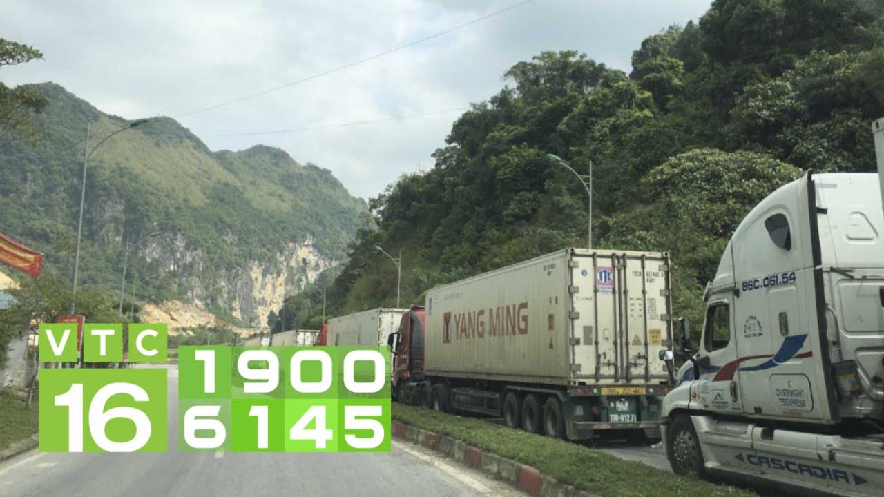 Xuất khẩu Trung Quốc gặp khó, nhiều nông sản sắp hư hỏng| VTC16