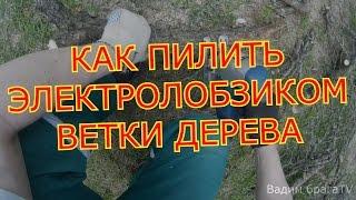 КАК ПИЛИТЬ ЭЛЕКТРОЛОБЗИКОМ ВЕТКИ ДЕРЕВЬЕВ.HOW TO SAW THE ELECTROFRET SAW OF THE BRANCH OF TREES.(КАК ПИЛИТЬ ЭЛЕКТРОЛОБЗИКОМ ВЕТКИ ДЕРЕВЬЕВ.HOW TO SAW THE ELECTROFRET SAW OF THE BRANCH OF TREES., 2016-04-25T17:32:24.000Z)