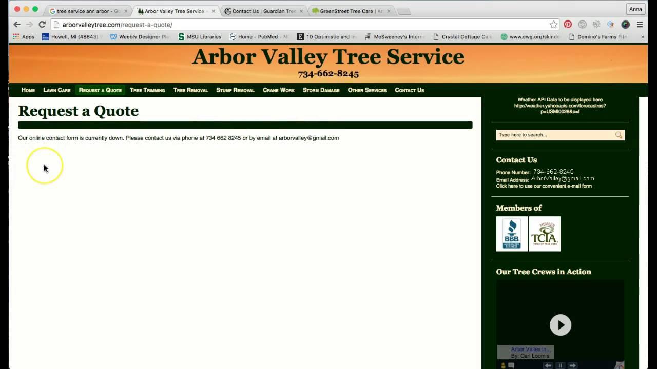 Arbor Valley Tree Service Align Local
