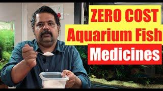 ZERO COST  Aquarium Fish  Aquarium Medications: How to Treat Sick Fish  diseases in aquarium fish