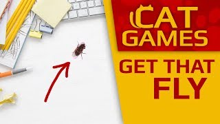 CAT GAMES - Get that fly!!! (Videos for CATS to WATCH) 4K 60FPS