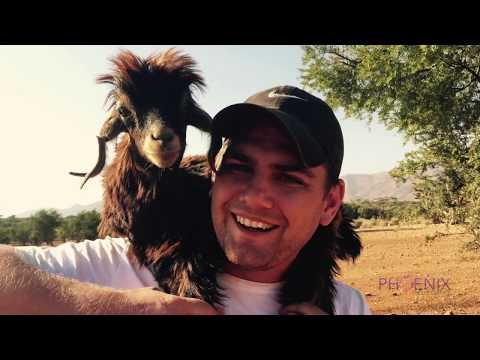 Morocco Travel Video