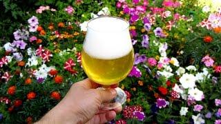 Рецепт медового пива от Алкофана, сухое охмеление