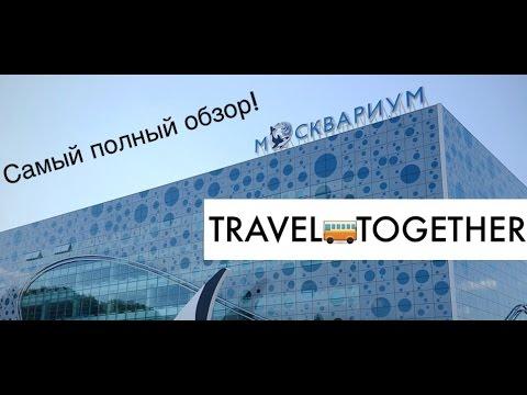 МОСКВАРИУМ. Самый полный обзор / Center of Oceanography and marine biology. Moscow, Russia