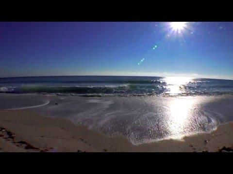 Relaxing Florida Beach Waves - 30 Minutes