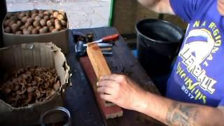 Самый простой и эффективный орехокол своими руками//чистка грецких орехов на бабочку