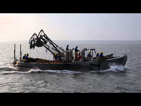 Omega protein vessel aids stranded tugboat at chesapeake for Chesapeake bay bridge fishing report