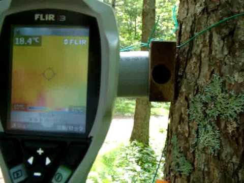 赤外線カメラ(サーモグラフィ)で「ヤマネのお宿」を見てみると…