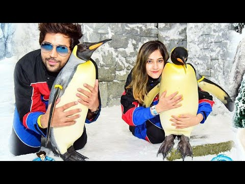 Penguin Encounter Ski Dubai (DXB) vlog