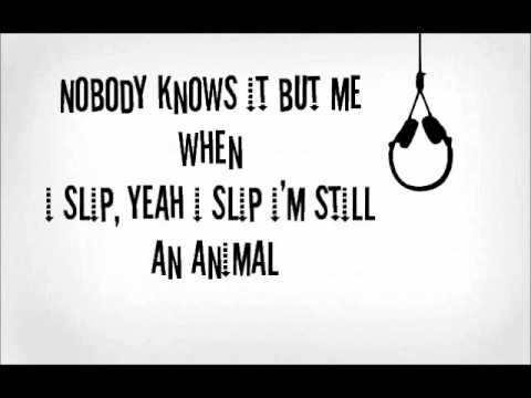 Animal (Miike Snow Cover)