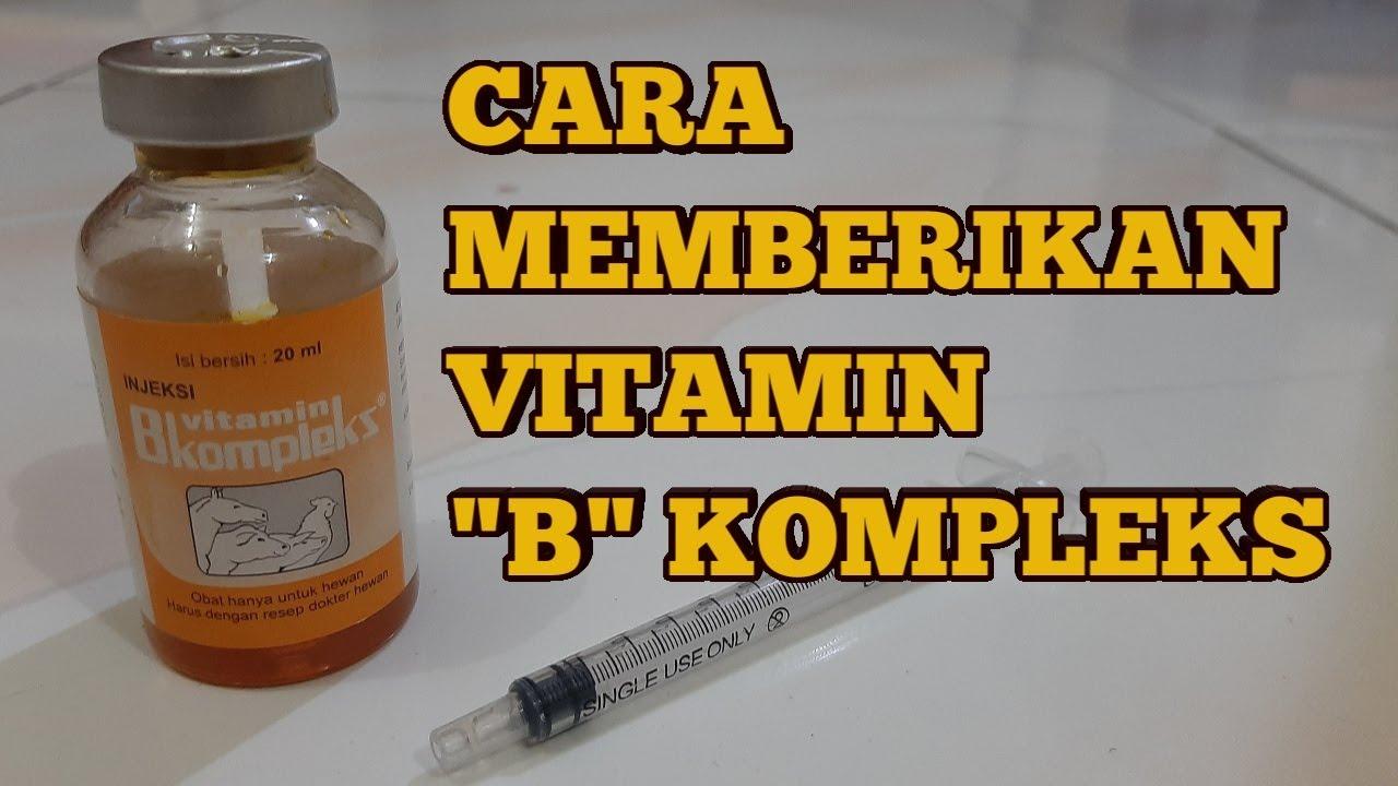 42+ Kegunaan vitamin b12 injeksi ideas