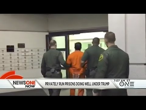 Private Prisons Back Trump And Could See Big Payoffs With New Policies