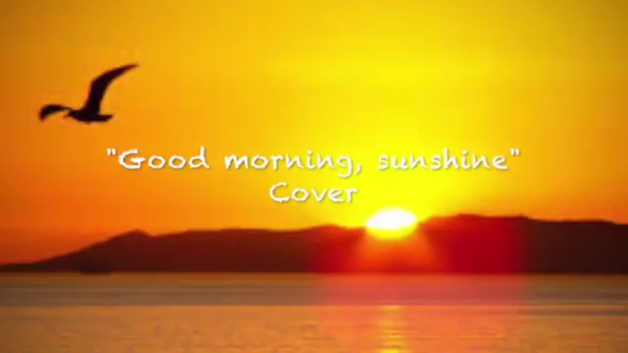 morning sun online dating Free to join & browse - 1000's of singles in morning sun, iowa - interracial dating, relationships & marriage online.