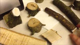 How To Dry Green Wood