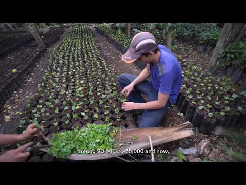 eco.business Fund Success Story - Coffee Producer Casal, El Salvador (long version)